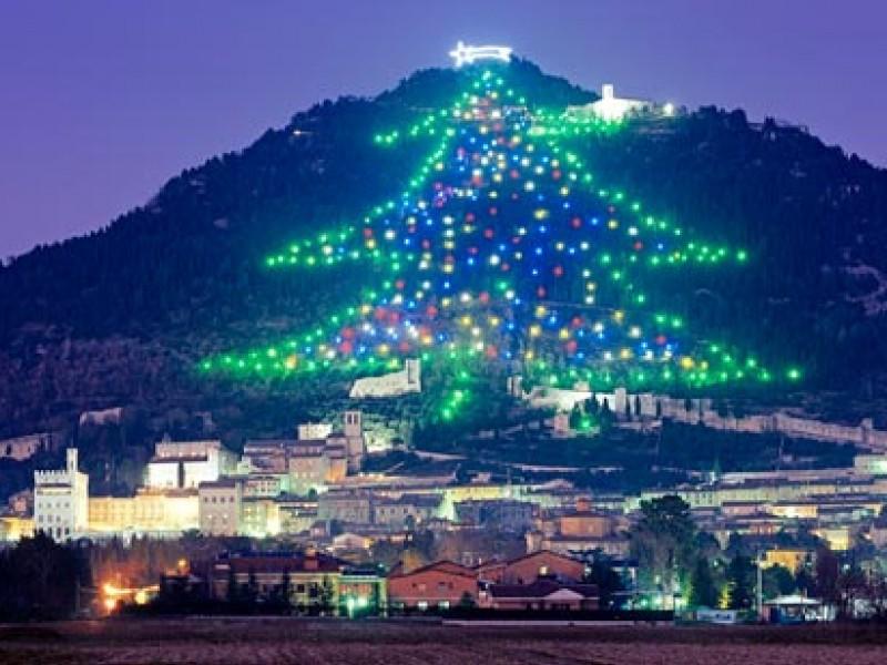 Sempre più un albero da record: quest'anno arriva la musica