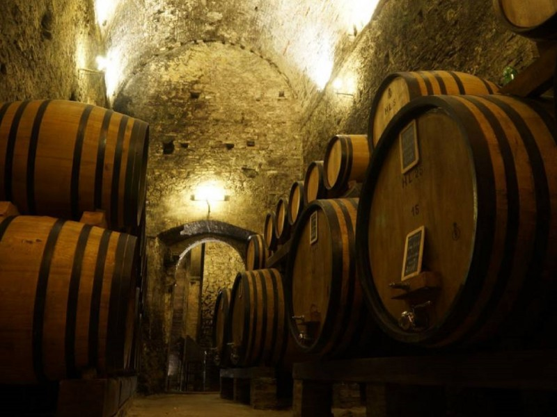Montepulciano wine tasting. The most beautiful cellar in the world