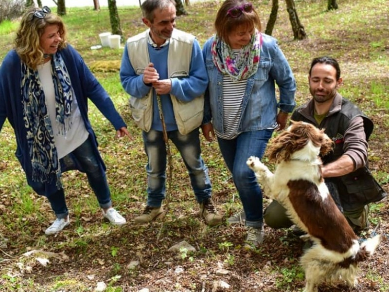 Umbria Truffle Hunt & Bio Lunch near Assisi