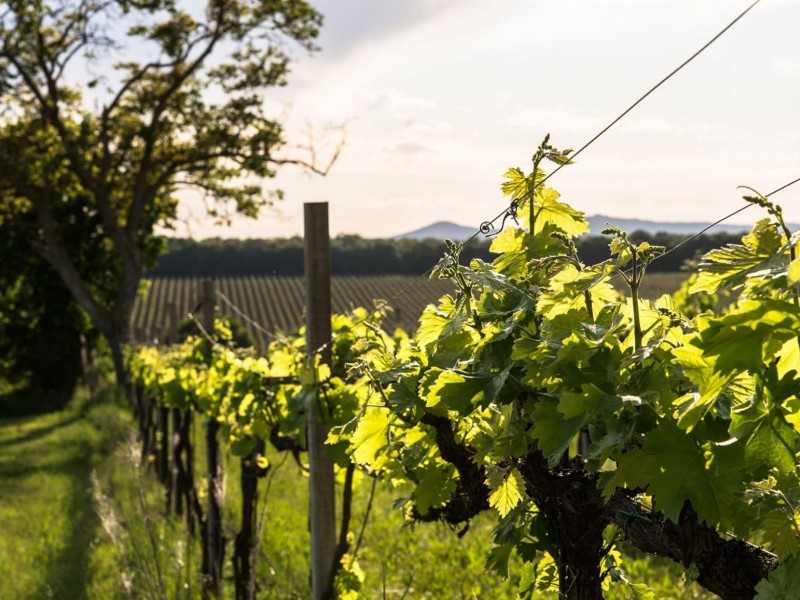 4 giorni vacanza in Umbria - Le meraviglie del cuore verde