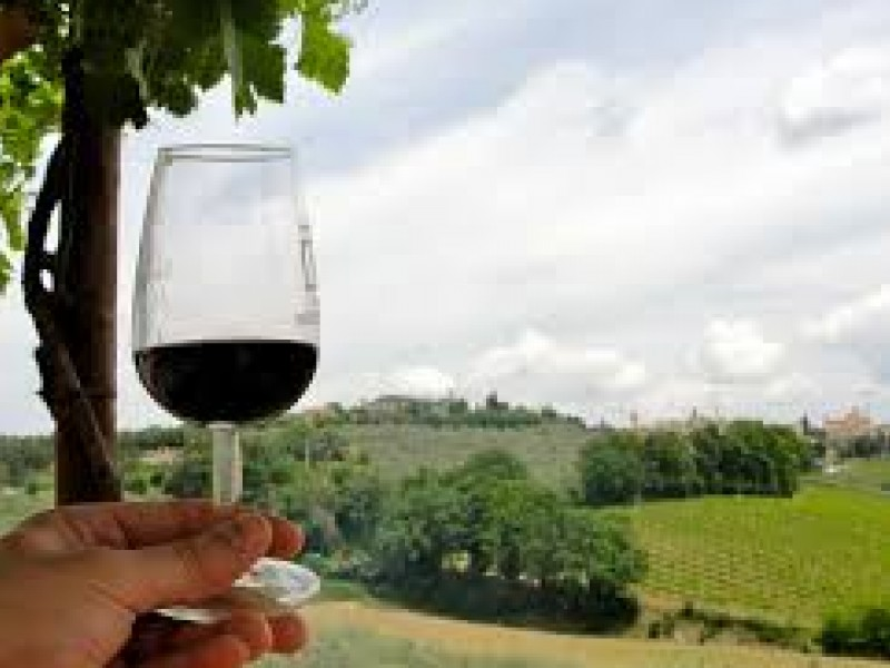 Private Full-day Umbria Wine Experience