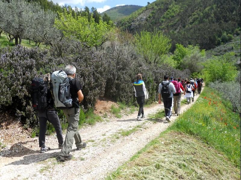 Camminare sui sentieri francescani