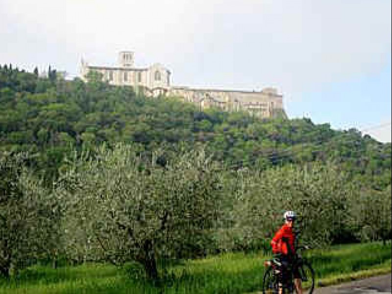 Walking and bike tours